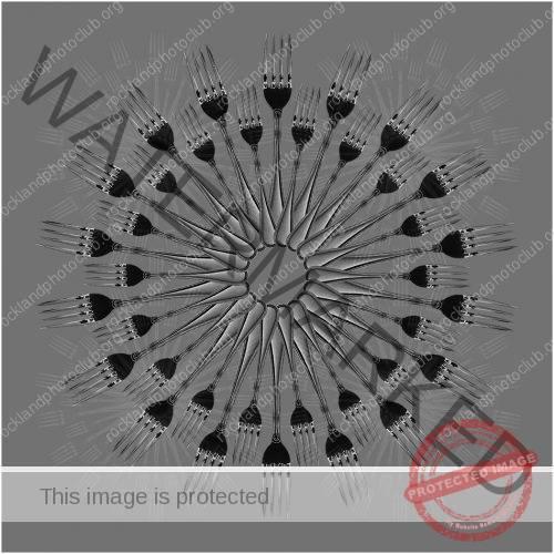 170 Craig Groth_AbstractOpen Mind SALON MONOCHROME_180 Forks_9 Award