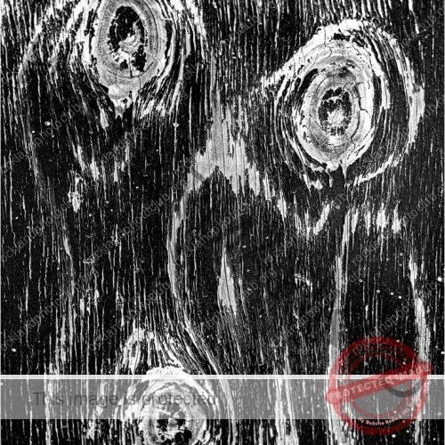 257 Andrea Swenson_AbstractOpen Mind SALON MONOCHROME_Daliesque_9 Award