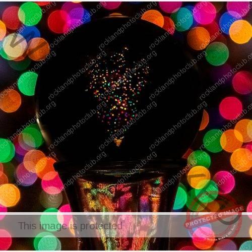 262 Linda Kontos_AbstractOpen Mind BEGINNER COLOR_Christmas Tree thru the Lensball_9 Award