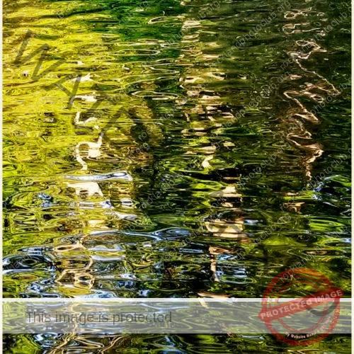 263 Evelyn Portnaya_AbstractOpen Mind ADVANCED COLOR_Reflections_9 Award