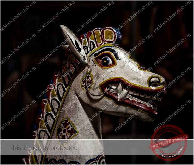 235 Ronny Mariano_All Things Considered SALON COLOR_Nightmare merry go round horse_Award