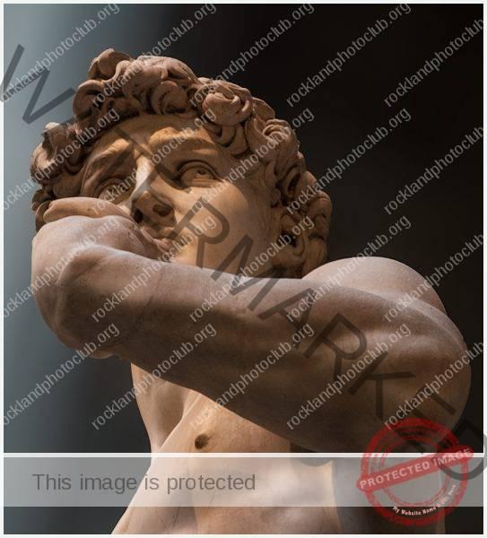 261 Peter Kontos_Looking Up or Looking Down BEGINNER COLOR_You Lookin Up At Me_9 Award