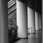 202 Debra Wallace_Architecture SALON MONOCHROME_Interior Architecture at Blue Hill_8 Honorable Mention