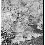 202 Debra Wallace_Land, Sea, and Cityscapes SALON MONOCHROME_Winter view at the Stony Brook_8 Honorable Mention