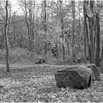 264 Ami Zohar_Land, Sea, and Cityscapes ADVANCED MONOCHROME_Boulders in a park_8 Honorable Mention
